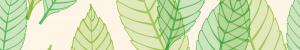 Waldkindergarten die Tummetotts Rendsburg Job 06